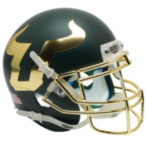 University of South Florida Bulls Chrome Mask XP Helmet
